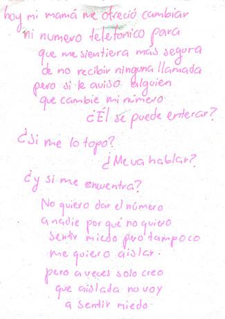 DiarioPagina17.jpg