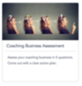 GoMasterCoach Coaching Business Assessme