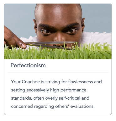 GoMasterCoach Perfectionist Syndrome.png