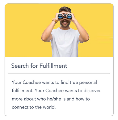 GoMasterCoach Search for Fulfillment.png