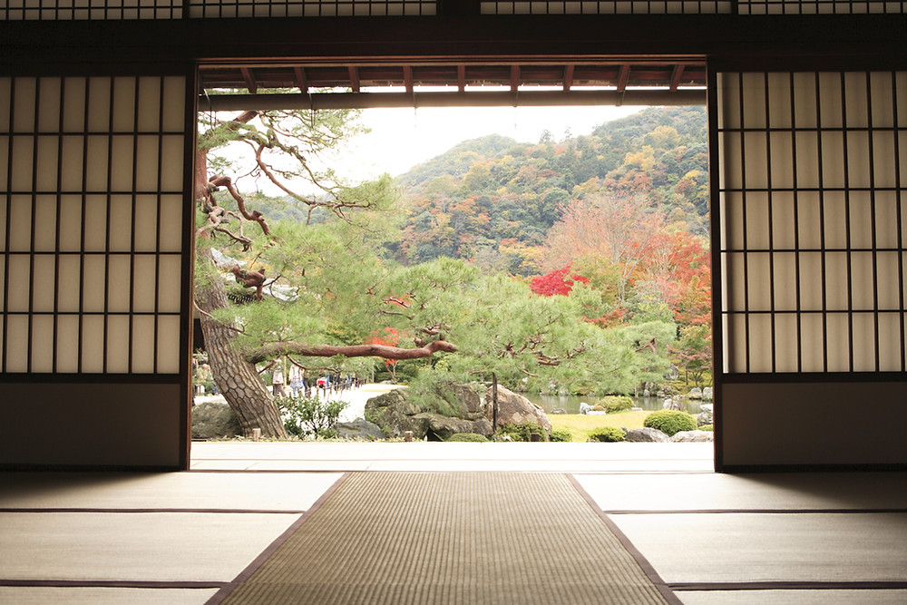 A seated view from a tatami mat into a tranquil Japanese garden