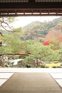 Shiatsu Bienne, soins, massage, bien-être, thérapie