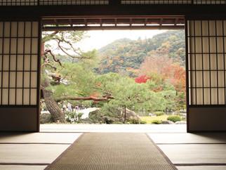 Vol. 9: 日本語の維持
