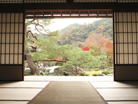 The Most Stunning Tai Chi Studios