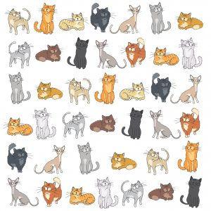 EBR007 Doodle-cats-300x300.jpg