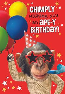 7_Apey Birthday.jpg