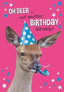 4_Oh Deer.jpg