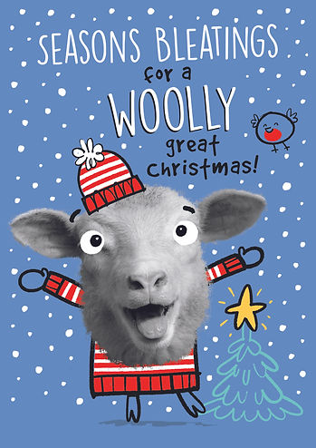 XPP003 Woolly.jpg