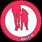 Rally-O Lugano