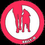 03 ICONA rally-o.png