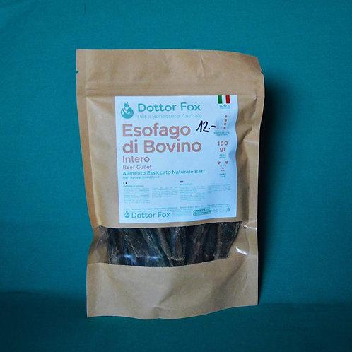 Esofago di bovino