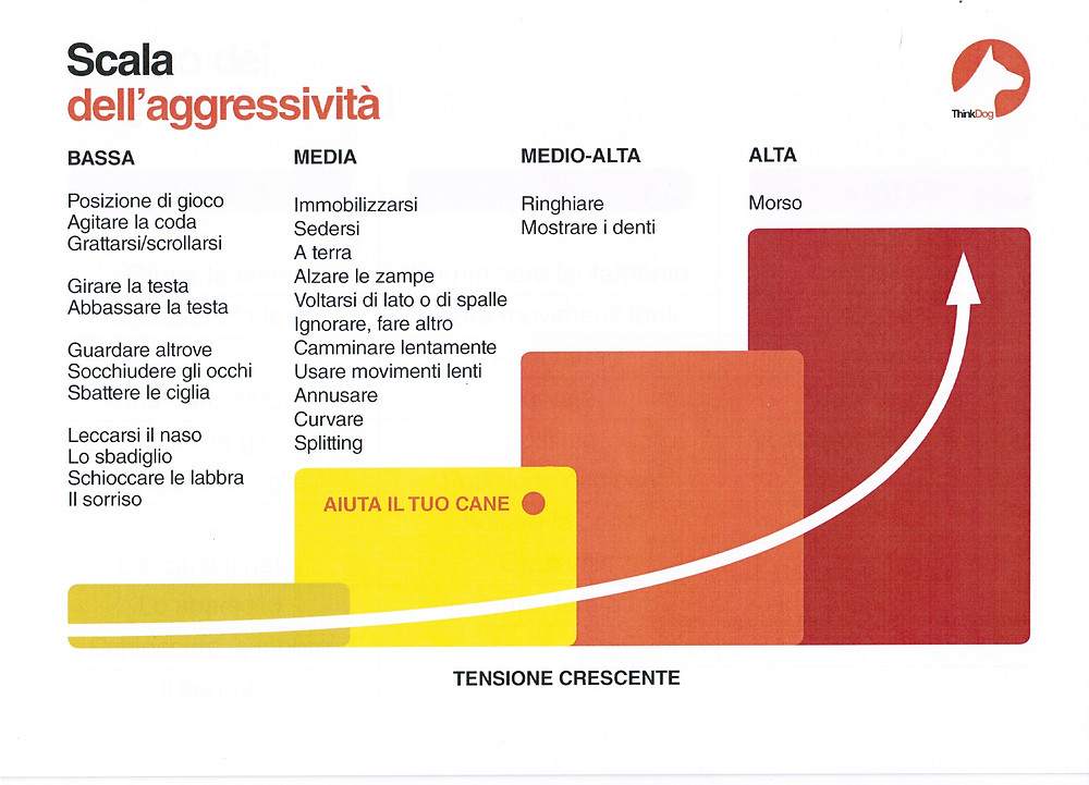 scala aggressività thinkdog
