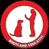 Bootcamp educativi