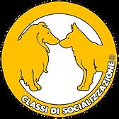 Classi di Socializzazione Lugano