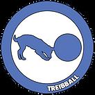 Treibball.png