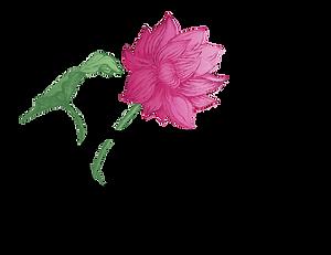 Lotus Logo-01.png