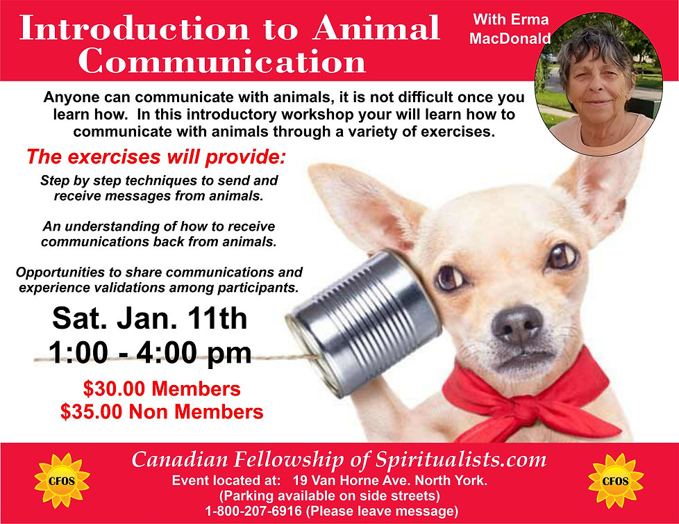 Animal Communication Jan 2020 1 a.jpg