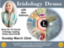 Iridology flyer 1 per page 1 a.jpg