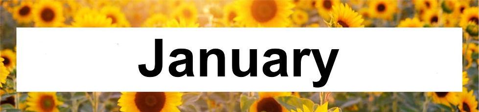1 Jan.jpg