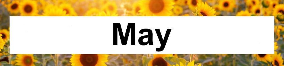 5 May.jpg