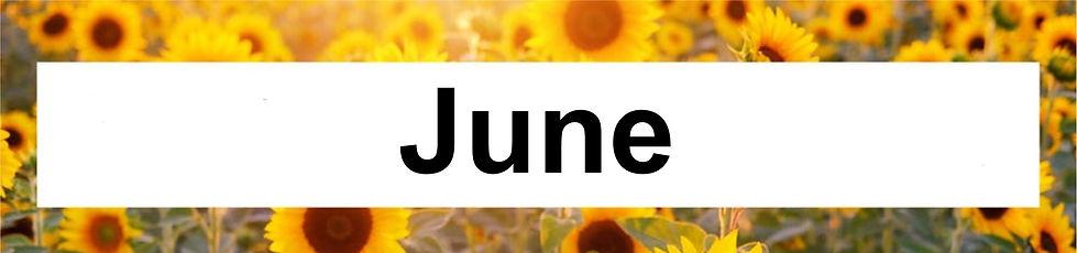 6 June.jpg