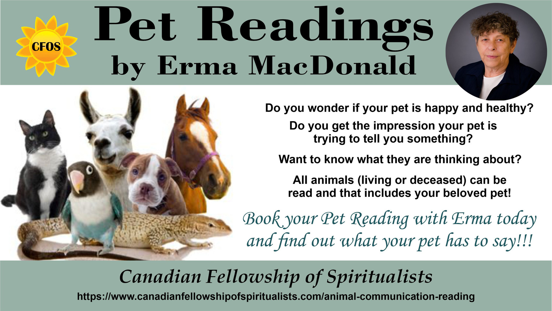 Animal Readings with Erma