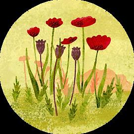 Poppy Circle.png