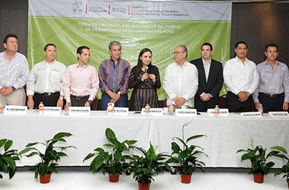 Coordinan esfuerzos sociedad, académicos, productores y gobierno en programas sectoriales.