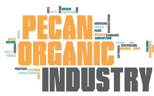 Organic Pecan Industry Word Cloud.