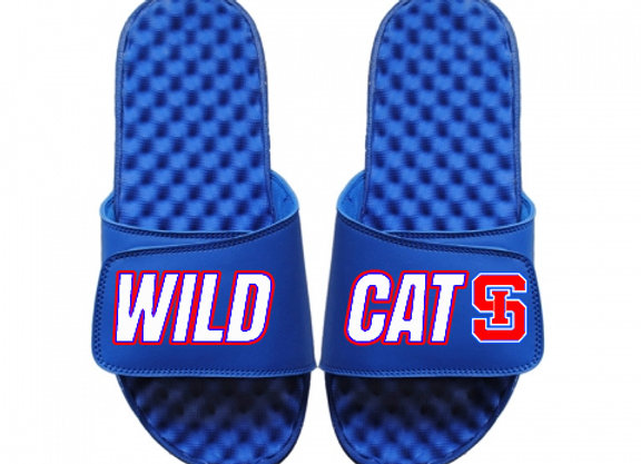 Custom Sandals (Logo on Top/Side Text)