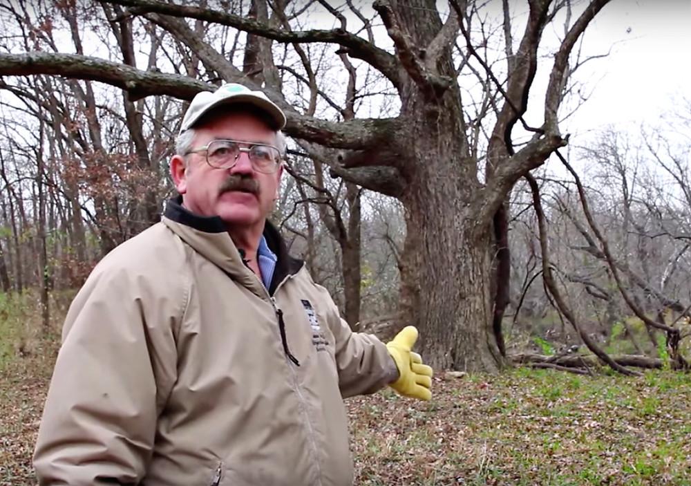 Missouri Organic Pecan Company owner Drew Kimmell discusses the unique features of native Missouri Organic Pecans.