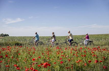 fietsroutes_in_de_westhoek.jpg