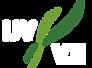 IJV_logo_tiny.png
