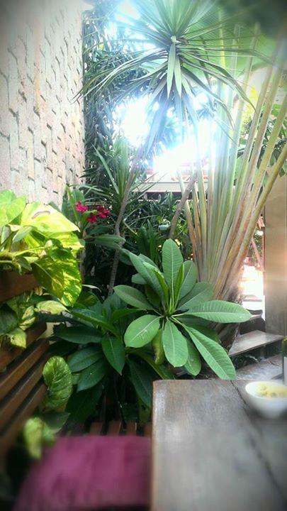 garden by MUDA