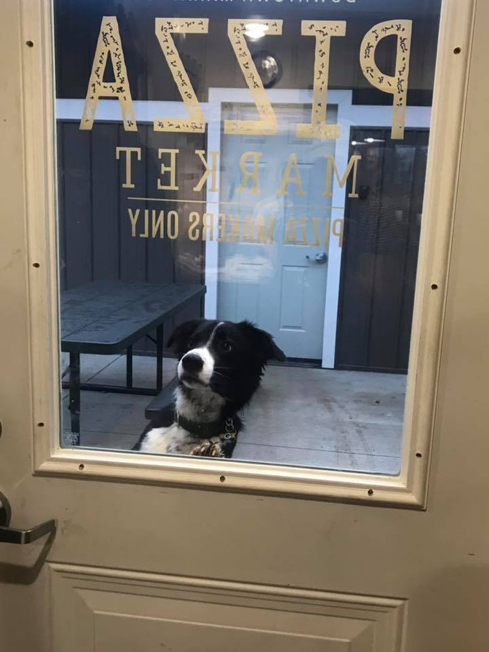Our Favorite Customer