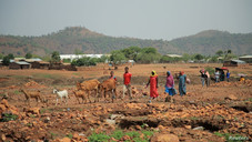 UN Says Armed Groups Threaten Eritrean Refugees in Tigray