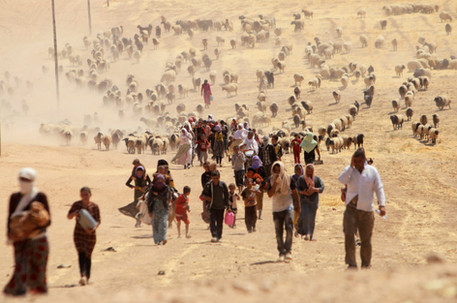 Timestream: Yazidi Persecution and Genocide