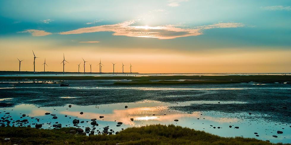 Ung i Fornybar spør: Kommer fornybarbransjen styrket ut av krisen?