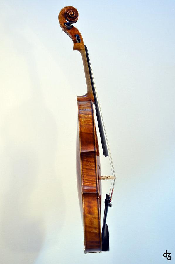 4 Viola Amati Seitenansicht.jpg