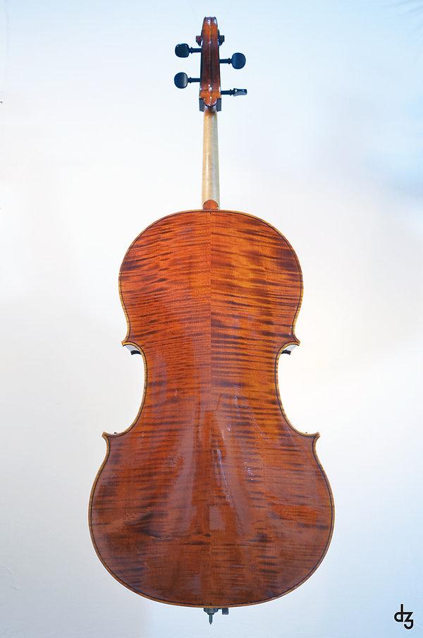 3 Cello Wettbewerb Hinteransicht.jpg