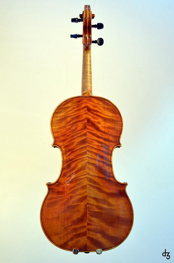 3 Viola Amati Hinteransicht.jpg