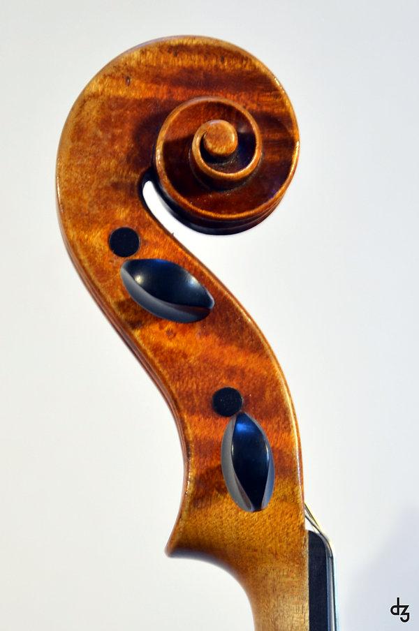 5 Viola Amati Schnecke Seitenansicht Kop