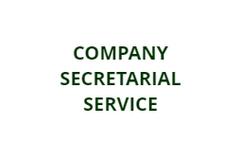 company secretarial.PNG