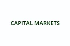 capital market.PNG