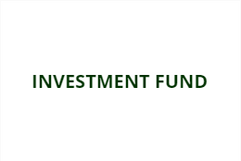 Investment fund.PNG