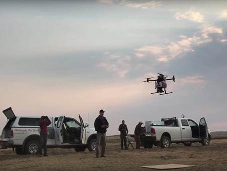 BIÓLOGOS PRESERVAM ECOSSISTEMA COM A AJUDA DE DRONES
