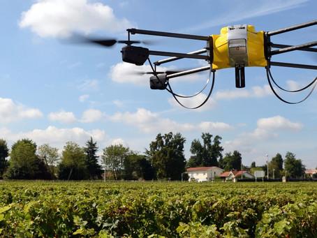 A AGRICULTURA FAZ USO DOS DRONES PARA ANÁLISE DAS PLANTAÇÕES