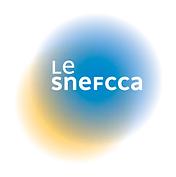SNEFCCA-Logo.png