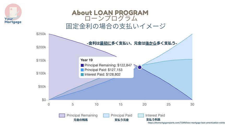 ローンプログラム amortization.png