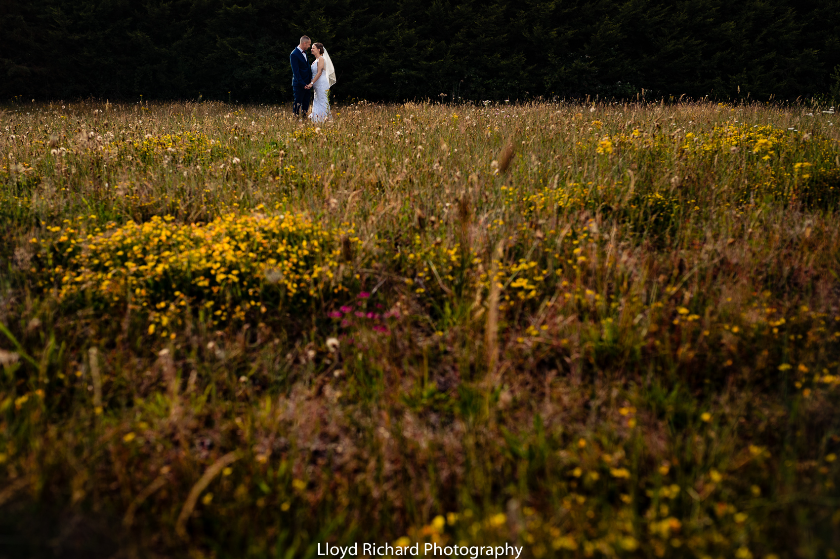 bride and groom in meadow at Cain Manor wedding